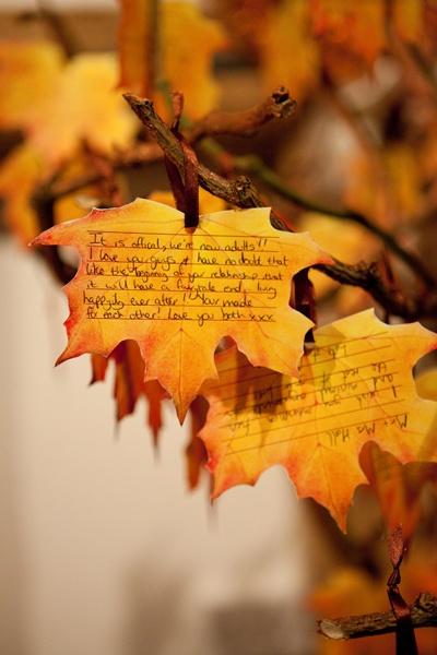 feuilles d'automne livre d'or
